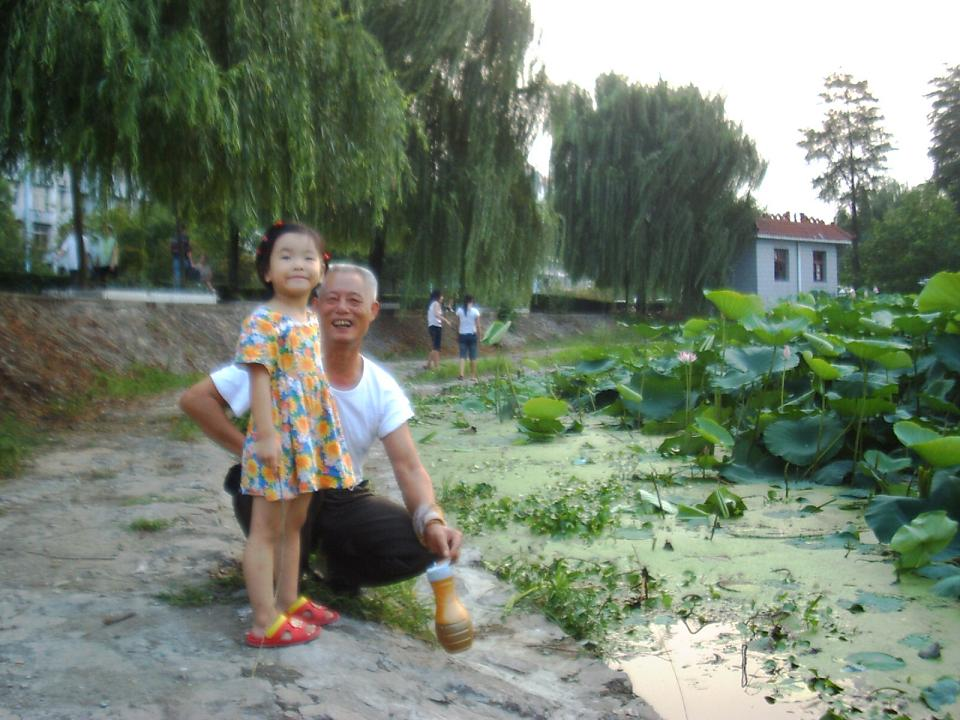 聪儿和爷爷湖边观荷。