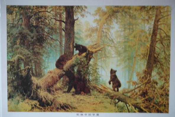 树叶 黑熊/其中这张《松树林的早晨》特别地优美恬静,几点可爱的小黑熊...