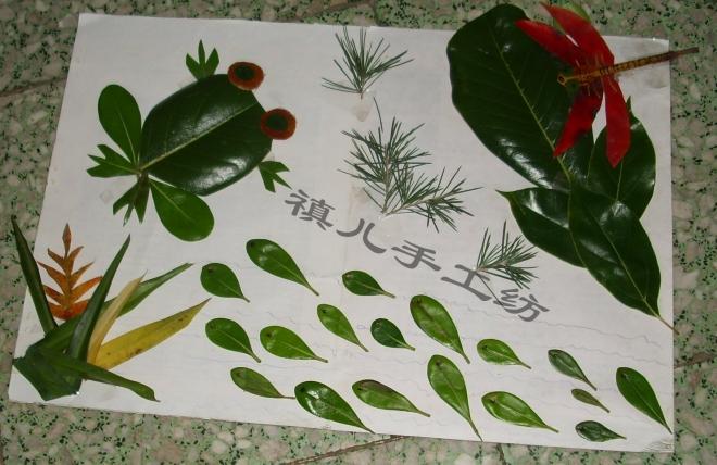 幼儿园作业【亲子手工】之一:树叶画