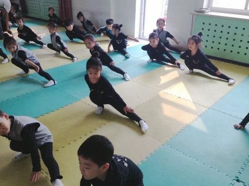幼儿园中班生活(七)武术操