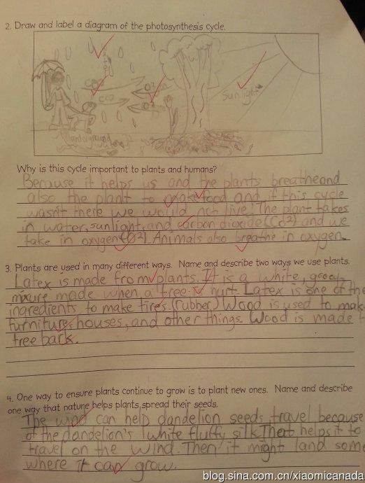 2013-11-03&nbsp;<wbr>三年级的科学之植物篇考试题