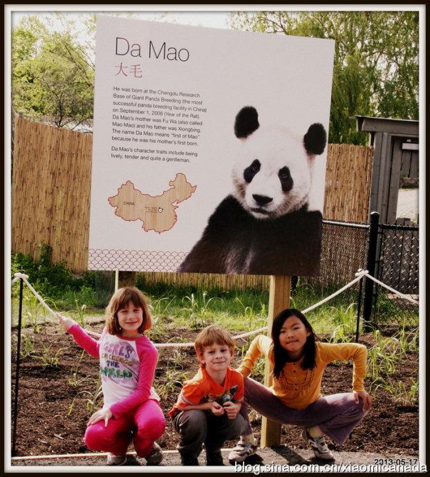 2013-05-23<wbr>唱歌&观看熊猫(补充照片)
