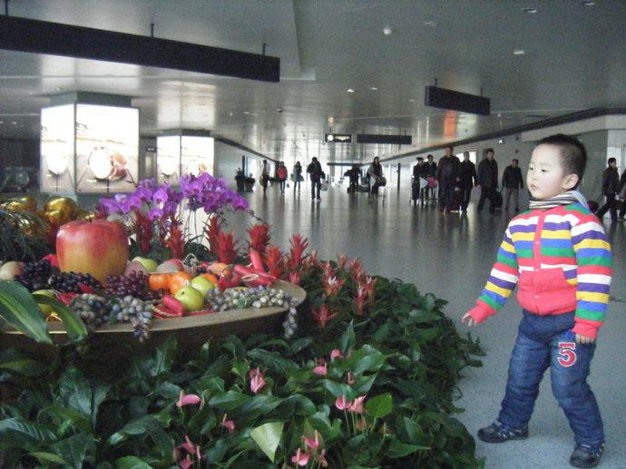 儿子的第一次飞行经历:一小时的飞行,七小时的旅程